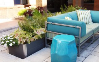 Summer Beds & Pots 59